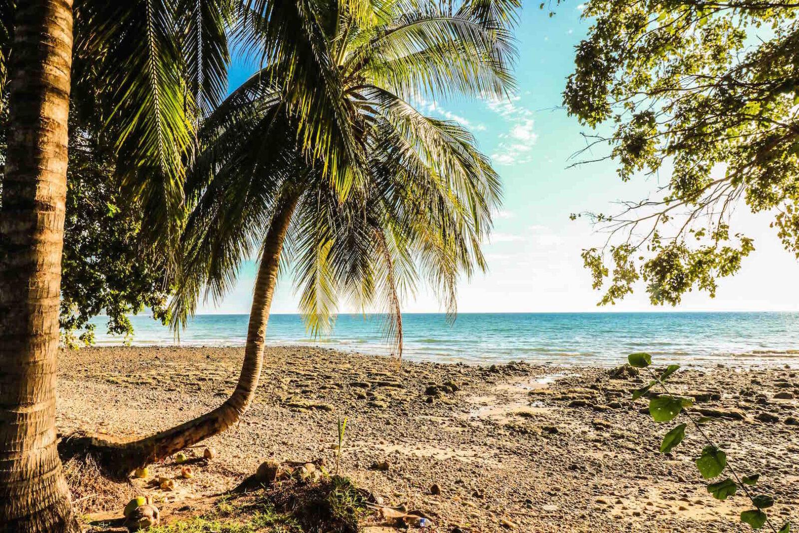 Visita la pagina italianbackpacker per visualizzare le foto dell isola di tioman